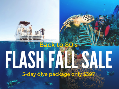 Flash Fall Sale - 5-Day Dive Package