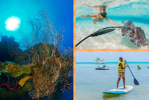 Fall in Cayman - Scuba Diving Offers