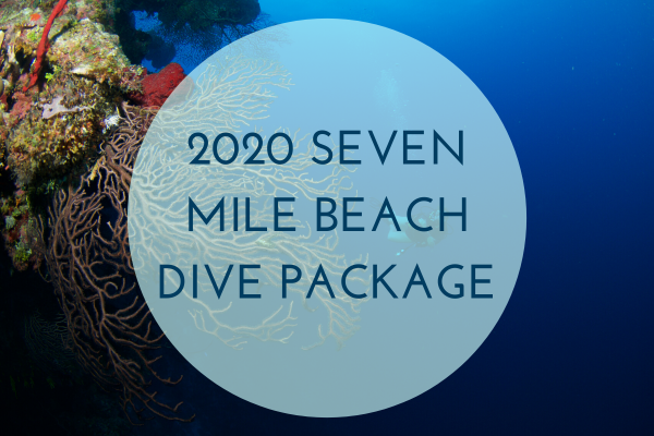 2020 Seven Mile Beach Dive Packages