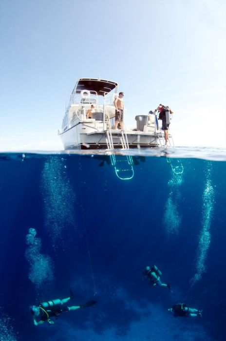 1337023815Diving---Boat-&-Divers---photographer-Amanda-Nicholls